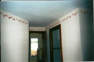 pintado techos