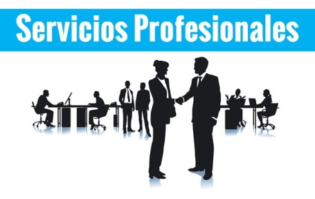 servicios profesionales multiservi sabadell pagina